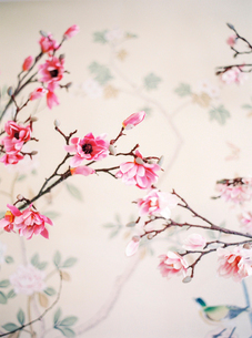 Norway, Painted pink flowers on tree branchの写真素材 [FYI02203480]
