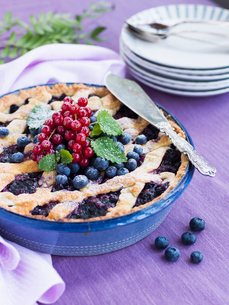 Sweden, Bilberry pie decorated with redcurrantの写真素材 [FYI02203492]