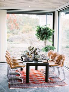 Sweden, Table set in dining roomの写真素材 [FYI02203715]