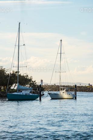 Australia, Queensland, Sunshine Coast, Mooloolaba, Sailboats in harbourの写真素材 [FYI02203929]