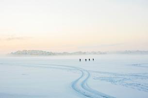 Sweden, Blekinge, Karlskrona, Borgmastarefjarden, Snowy landscape with people walking in distanceの写真素材 [FYI02204054]