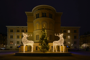 Sweden, Uppland, Stockholm, Illuminated Christmas reindeers in front of buildingの写真素材 [FYI02204108]