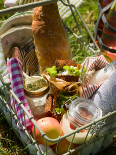 Sweden, Skane, Wire basket with food on grassの写真素材 [FYI02204236]