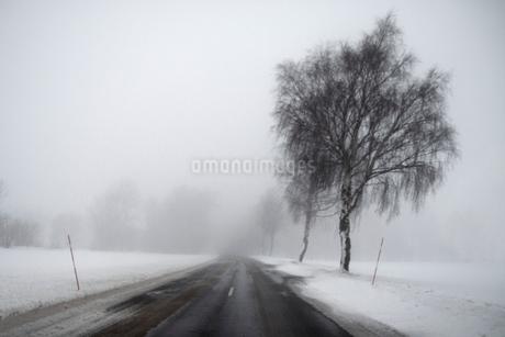 Sweden, Gotland, Road in snowの写真素材 [FYI02204249]
