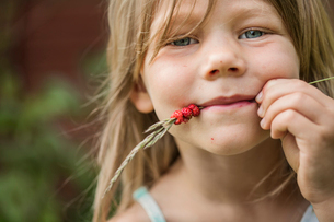 Sweden, Portrait of girl (4-5) with wild strawberries on spikelet in mouthの写真素材 [FYI02204568]