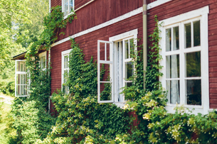 Sweden, Smaland, Mortfors, Farbo, Red house on sunny dayの写真素材 [FYI02204577]