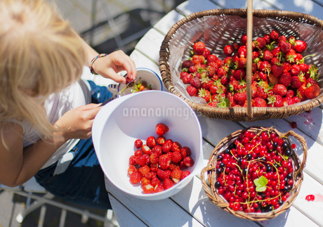 Denmark, Mon, Girl (12-13) cutting strawberriesの写真素材 [FYI02204695]