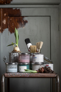 Sweden, Paint cans and onion bulb on tableの写真素材 [FYI02204800]