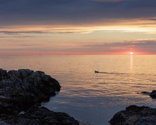 Sweden, Skane, Molle, Kullaberg at sunsetの写真素材 [FYI02204807]