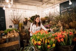 Sweden, Woman choosing flowers in shopの写真素材 [FYI02204808]