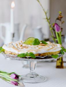 Sweden, Keylime pie on cakestandの写真素材 [FYI02204851]