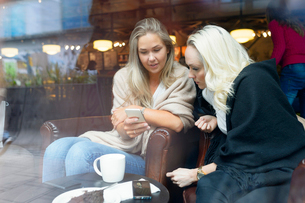 Sweden, Young women using mobile phone at cafeの写真素材 [FYI02205014]