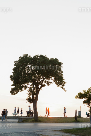Sweden, Gotland, Visby, People walking on street during sunsetの写真素材 [FYI02205035]