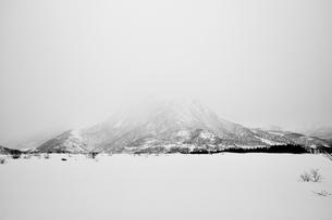 Norway, Lofoten, Snowcapped mountain in fogの写真素材 [FYI02205070]