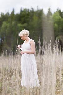 Sweden, Vastmanland, Teenage girl (16-17) in white dress standing in meadow among dried plantsの写真素材 [FYI02205276]