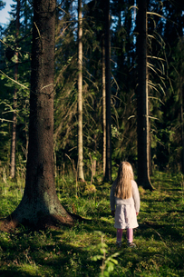 Finland, Paijat-Hame, Heinola, Girl (4-5) standing in spruce forestの写真素材 [FYI02205340]