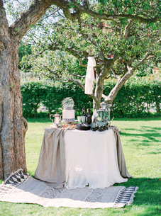 Sweden, Table and rug under treeの写真素材 [FYI02205555]