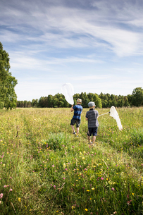 Sweden, Gotland, Boys (6-7, 8-9) with butterfly nets in meadow with forest on horizonの写真素材 [FYI02205751]