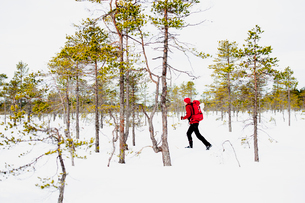 Sweden, Vastmanland, Man hiking in Kindla nature reserveの写真素材 [FYI02206392]