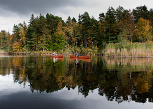 Sweden, Smaland, Mature men in boats on lake in autumn forestの写真素材 [FYI02206639]