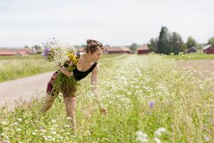 Sweden, Dalarna, Mora, Mid adult woman with bunch of wildflowersの写真素材 [FYI02206686]