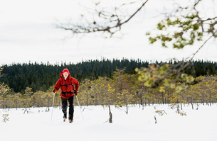 Sweden, Vastmanland, Bergslagen, Kindla Naturreservat, Mature man skiing through plain with forest oの写真素材 [FYI02206700]