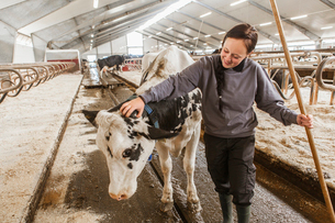 Sweden, Skane, Female dairy farmer at workの写真素材 [FYI02206761]