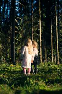 Finland, Paijat-Hame, Heinola, Two girls (2-3, 4-5) standing in spruce forestの写真素材 [FYI02206762]
