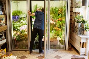 Sweden, Florist working in flower shopの写真素材 [FYI02206863]