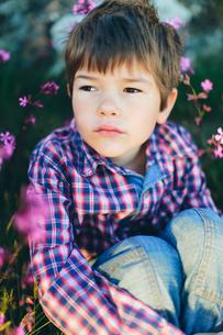 Sweden, Boy (6-7) sitting among pink flowersの写真素材 [FYI02206881]