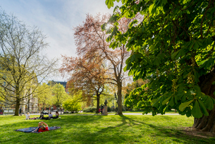 Sweden, Uppland, Stockholm, Ostermalm, Humlegarden, People resting in parkの写真素材 [FYI02206901]