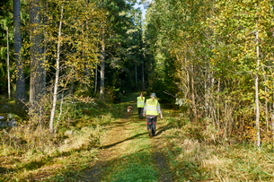Sweden, Uppland, Rison, Volunteers with dog helping emergency services find missing peopleの写真素材 [FYI02206954]