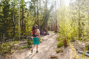 USA, Colorado, Rocky Mountain National Park, Young man hiking in forestの写真素材 [FYI02207510]