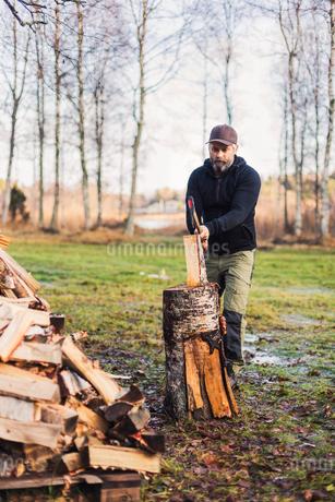 A man splitting fire woodの写真素材 [FYI02207520]