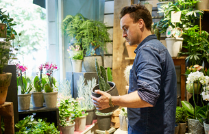 Sweden, Florist working in flower shopの写真素材 [FYI02207553]