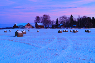 Sweden, Narke, Farm buildings at duskの写真素材 [FYI02207587]