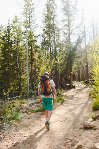 USA, Colorado, Rocky Mountain National Park, Young man hiking in forestの写真素材 [FYI02207717]