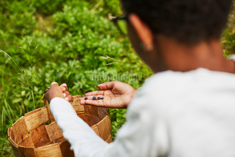 Boy with a basket of bilberriesの写真素材 [FYI02207745]