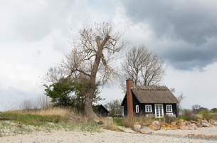 Cottage on beach in Rytzak Strand, Denmarkの写真素材 [FYI02207751]