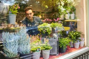 Sweden, Florist working in flower shopの写真素材 [FYI02207825]