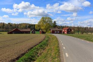 Farmland in Edsberg, Swedenの写真素材 [FYI02207850]