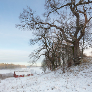 House in snow in Skane, Swedenの写真素材 [FYI02207896]
