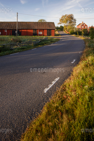Rural road in Krokshult, Swedenの写真素材 [FYI02207993]