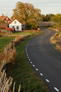 Houses along rural road in Krokshult, Swedenの写真素材 [FYI02208052]