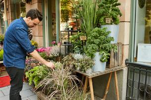 Sweden, Florist working in flower shopの写真素材 [FYI02208062]