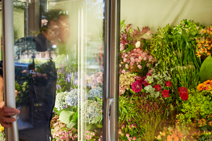 Sweden, Florist looking at flowers in floral coolerの写真素材 [FYI02208198]