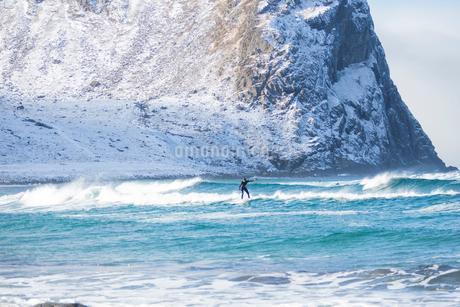 Surfer in Lofoten, Norwayの写真素材 [FYI02208254]