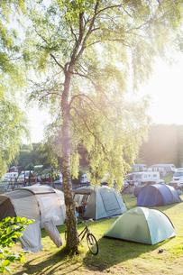 Sweden, The West Coast, Bohuslan, Marstrand, Koon, Tents at campsiteの写真素材 [FYI02208262]