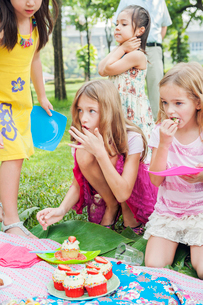 Children at birthday picnicの写真素材 [FYI02208272]