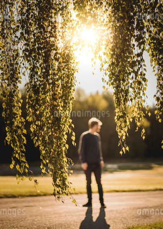 Tree branches with man in background in Sodermanland, Swedenの写真素材 [FYI02208275]